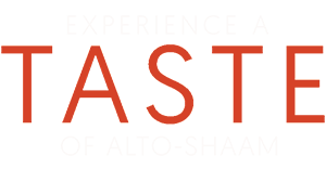 TOAS-Logo-White_Orange300.png